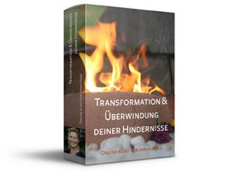 Online-Kurs: Transformation